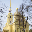 Foto Stock: Cathedral in name of Holy apostles Peter and Paul winter day. Saint-Petersburg