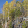 Stock Photo: Autumn in Karelia