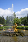 The fountain of the Triton in the Lower Park. Peterhof — Stock Photo