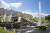 View of the Big cascade in Petrodvorets — Stock Photo