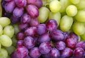 Green and rose grapes background — Stock Photo