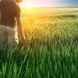 Man in wheat field and sunlight — Stock Photo