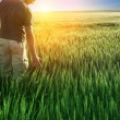 Man in wheat field and sunlight — Stock Photo #13407162