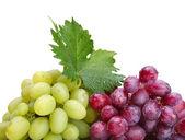 Färska rosa och gröna druvor med blad — Stockfoto