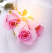 Pink roses on a white silk — Stock Photo