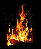 Burning log and fire — Stock Photo