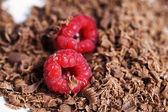 Chokolate — Stock Photo