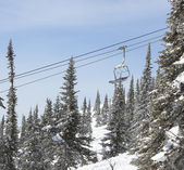 Chairlift in the forest, winter — Stok fotoğraf