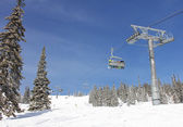 Six snowboarders ride the chair lift in a forest — Foto Stock