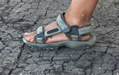 Human foot in sandals on the cracked earth — Stock Photo