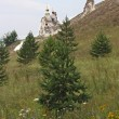 Stock Photo: Orthodox cave temple, side view through small trees and flowers