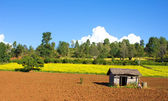 Rural landscape with a peasant house and arable — Stock Photo