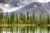 Berglandschap met lake, bos en wolken, regenachtig weer, — Stockfoto