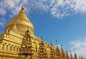 Shwezigon Pagoda(Paya) with flying doves in Bagan — Stock Photo