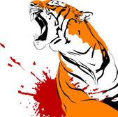 Wounded tiger — Stock Vector