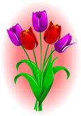 тюльпан — Cтоковый вектор
