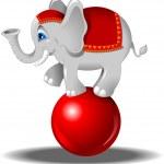 Elephant on the ball — Stock Vector