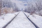 Railroad track in winter — Stock Photo
