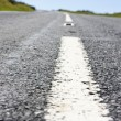Close up of the centre white line of a road — Stock Photo