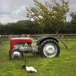 Stock Photo: Typical old british farmyard scene