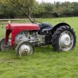 Old red tractor in a farm field in uk — Stock Photo