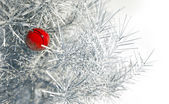 Christmas red ball on snowy conifer — ストック写真