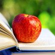 Apple on open book — Stock Photo #12208470