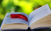 Red hot chili pepper on open book — Stockfoto
