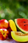 Slice of melon and ripe fruits — Stock Photo