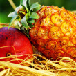 Raw tropical fruits, pineapple and mango - Stock Photo