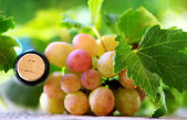 Cork bottle wine and grapes — Stock Photo