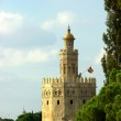 Torre del Oro . Sevilla, Spain — Stock Photo #13732659