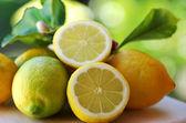 Ripe lemons on table — Stock Photo