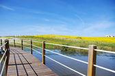 Holzbrücke in den see von alqueva — Stockfoto