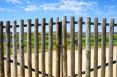 Closed gate in entrance of farm — Stock Photo
