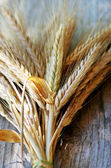 Spikes of Wheat on the Wood Background — Stock Photo