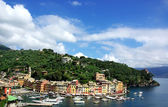 Portofino village — Stock Photo