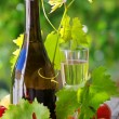 Champagne glass and fruits — Stock Photo