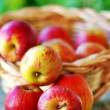Basket of apples on table — Stock Photo #26741485