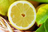 Slice of ripe lemon — Stock Photo