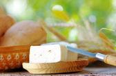 White cheese of goat — Stock Photo