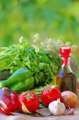 Vegetables, olive oil and ingredients — Stock Photo
