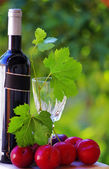 Bottle of red wine and ripe fruits — Stock Photo