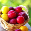 Fresh plums in the basket on table — Stock Photo