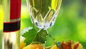 Foglie, vetro e bottiglia di vino bianco — Foto Stock