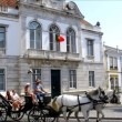 Horse and carriage at Giraldo square — Stock Video #30343009