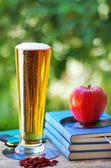 Cerveza fría y manzana en libros — Foto de Stock