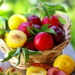 Plums in basket and cut plum on table — Stock Photo