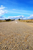 Rural road in Alentejo region — ストック写真