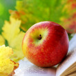 Apple and leaves on book. — Stock Photo